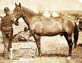 Historic Comanche photo