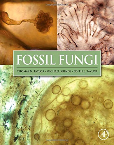 Fossil Fungi Book Cover