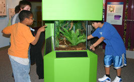 Bugtown exhibit