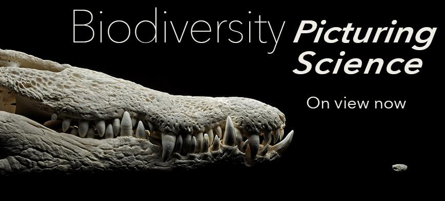 Biodiversity: Picturing Science