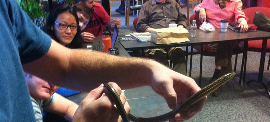 Herpetology masters student Kerry Cobb does a show and tell with a glass lizard (Ophisaurus attenuatus) while students Carl Hutter, Tashitso Anamza, Chan Kinn Onn, Jesse Grismer, Bill Duellman, and Linda Trueb look on. Fall 2013.