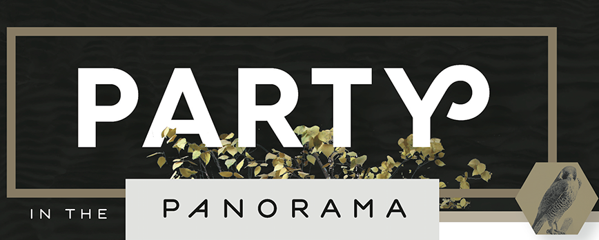 Party in the Panorama 2016