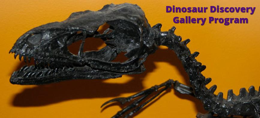 Dinosaur Discovery gallery program