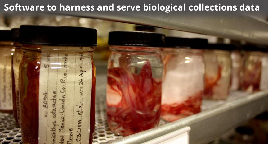 Software to harness and serve biological collections data