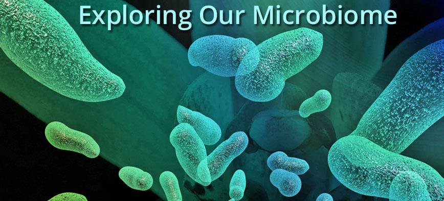 Exploring our microbiome